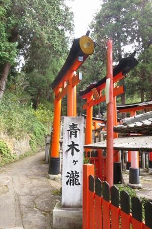 kyoto-take_14