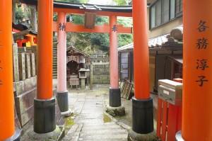 kyoto-take_15