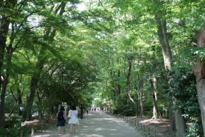 糺(ただす)の森