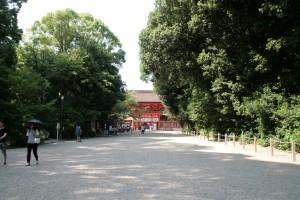 kyoshimo_38